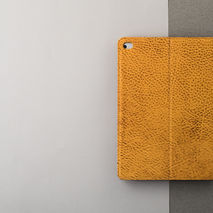 The Access Case for iPad Air 1/2 & iPad Mini 1/2/3