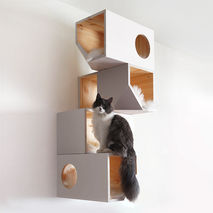 White Catissa Cat Tree