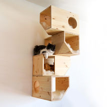 Natural Catissa Cat Tree