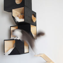 Black Catissa Cat Tree