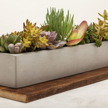 Concrete Planter 24""